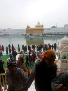 golden temple4